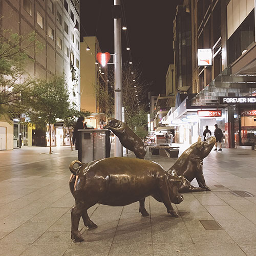 Pig statues at Rundle Mall, Adelaide