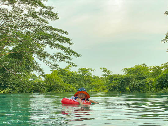 Capella Singapore Swimming Pool