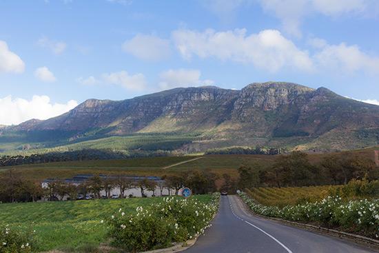 Cape Town Constantia Wine Route