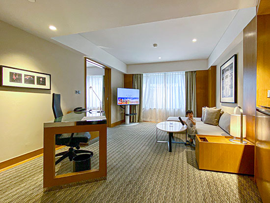Grand Hyatt Singapore Deluxe Room Junior Suite