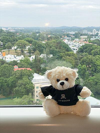 St Regis Hotel Singapore Botanical Gardens